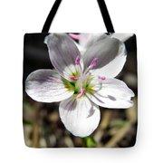 Wildflower Sun Worship Tote Bag