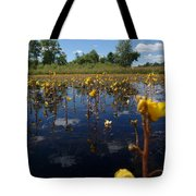 Wildflower Waterscape Tote Bag