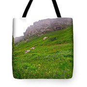 Wildflowers And Mountainous Bluffs At Point Amour In Labrador Tote Bag