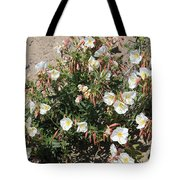 Wildflowers - Desert Primrose Tote Bag