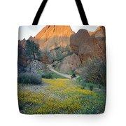 1b6430 Wildflowers In Pinnacles National Park Tote Bag