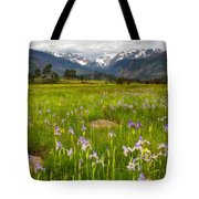 Wildflowers In Rocky Mountain National Park Tote Bag