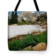 Wildflowers In The Indian Peaks Wilderness Tote Bag
