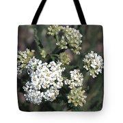 Wildflowers - White Yarrow Tote Bag