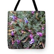 Wildflowers - Woolly-pod Locoweed Tote Bag