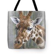 Wildlife Giraffe  Tote Bag
