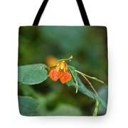 Wildly Orange Tote Bag