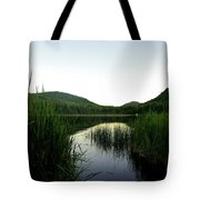 Wilgress Evening Tote Bag