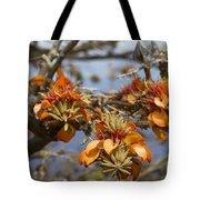 Wiliwili Flowers - Erythrina Sandwicensis - Kahikinui Maui Hawaii Tote Bag