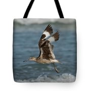 Willet In Flight Showing Wing Molt Tote Bag