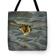 Willet Washing 1 Tote Bag