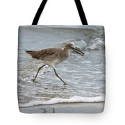 Willet With Mole Crab Tote Bag