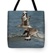 Willets In Flight Showing Molt Tote Bag