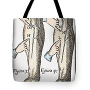 William Harvey: Blood, 1628 Tote Bag