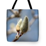 Magnolia Buds Tote Bag