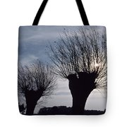 Willow Trees In Winter Tote Bag