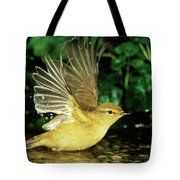 Willow Warbler Phylloscopus Trochilus Tote Bag