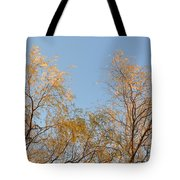 Willows And Sky Tote Bag