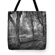 Willows In Spring Park Tote Bag