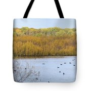 Willows Of October Tote Bag