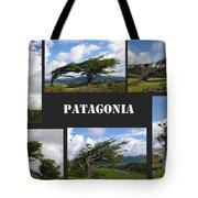 Wind-bent Flag Trees In Tierra Del Fuego Tote Bag
