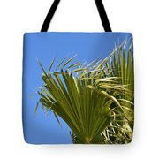 Wind In The Palm Tote Bag