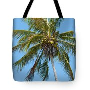 Windblown Coconut Palm Tote Bag