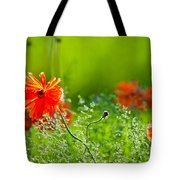 Windblown Poppies Tote Bag