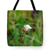 Winded White Tote Bag