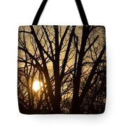 Winding Down The Evening Tote Bag