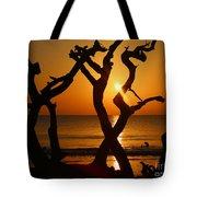 Winding Light Tote Bag