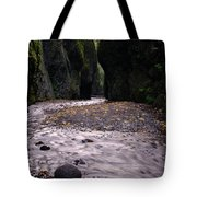 Winding Through Oneonta  Gorge Tote Bag