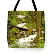 Winding Through The Forest Tote Bag