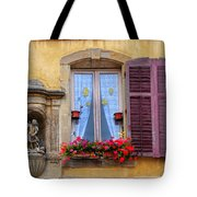 Window And Sculpture Tote Bag