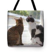 Window Cats Tote Bag