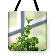 Window Herb Garden Tote Bag