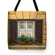 Window In Rome Tote Bag