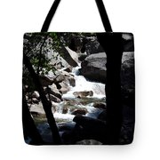 Window Into Time Tote Bag