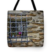 Window Of Vernazza Italy Dsc02629 Tote Bag