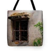 Window On Canvas Tote Bag