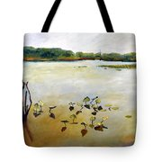Window On The Waterfront Tote Bag