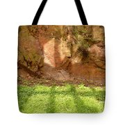 Window Reflections On Grass And Rock Face Tote Bag