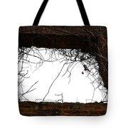 Window Through Time Tote Bag