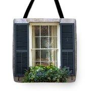 Window Xii Tote Bag