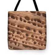 Windows In The Rock Tote Bag