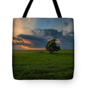 Windows Sd Tote Bag