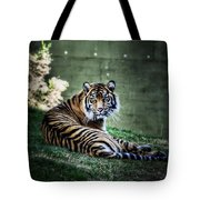 Windows To My Soul Tote Bag