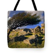 Windswept Hawthorn Tree Tote Bag