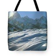1m9342-windswept Snow Tote Bag