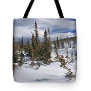 Windswept Terrain Tote Bag